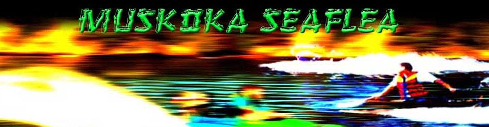 Muskoka Seaflea